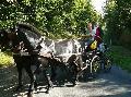 Photo n° 28670 Randonnée de Caumont -photo Sylvie Bonhomme  Affichée 76 fois Ajoutée le 11/09/2013 12:17:17 par JeanClaudeGrognet  --> Cliquer pour agrandir <--