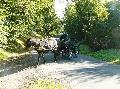 Photo n° 28672 Randonnée de Caumont -photo Sylvie Bonhomme  Affichée 29 fois Ajoutée le 11/09/2013 12:17:17 par JeanClaudeGrognet  --> Cliquer pour agrandir <--