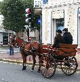 Photo n° 29319 CIAT Deauville 2013  Affichée 24 fois Ajoutée le 17/10/2013 10:16:59 par Renata  --> Cliquer pour agrandir <--