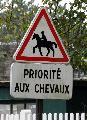 Photo n° 29344 CIAT Deauville 2013  Affichée 19 fois Ajoutée le 17/10/2013 10:17:01 par Renata  --> Cliquer pour agrandir <--