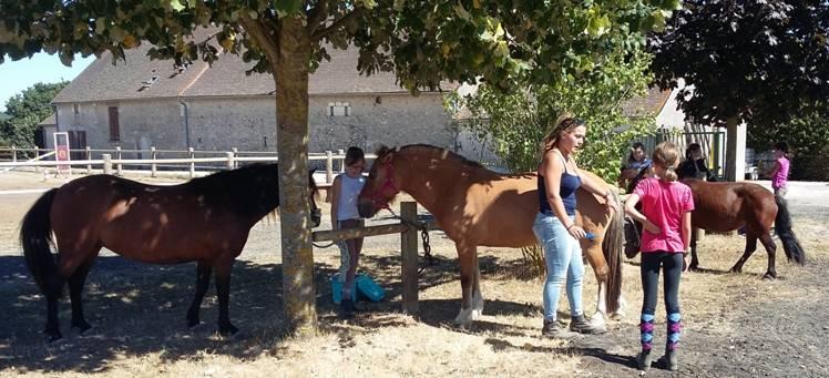 centre equestre reignac sur indre