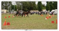 Photo n° 38176 ALIXAN 2016 photo Héliosness  Affichée 10 fois Ajoutée le 19/09/2016 09:59:54 par JeanClaudeGrognet  --> Cliquer pour agrandir <--