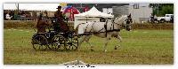 Photo n° 38196 ALIXAN 2016 photo Héliosness  Affichée 4 fois Ajoutée le 21/09/2016 08:04:27 par JeanClaudeGrognet  --> Cliquer pour agrandir <--