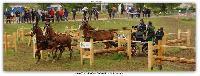 Photo n° 38200 ALIXAN 2016 photo Héliosness  Affichée 23 fois Ajoutée le 21/09/2016 08:04:28 par JeanClaudeGrognet  --> Cliquer pour agrandir <--