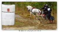 Photo n° 38205 ALIXAN 2016 photo Héliosness  Affichée 11 fois Ajoutée le 21/09/2016 08:04:28 par JeanClaudeGrognet  --> Cliquer pour agrandir <--