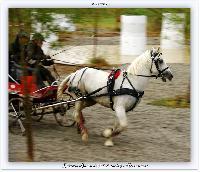 Photo n° 38210 ALIXAN 2016 photo Héliosness  Affichée 6 fois Ajoutée le 21/09/2016 08:04:28 par JeanClaudeGrognet  --> Cliquer pour agrandir <--
