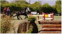 Photo n° 38428 LIGNIERES CdF 2016  Affichée 8 fois Ajoutée le 14/10/2016 09:17:10 par JeanClaudeGrognet  --> Cliquer pour agrandir <--