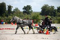 Photo n° 38435