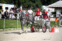Photo n° 38436