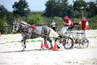 Photo n° 38437