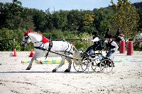 Photo n° 38439