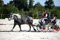 Photo n° 38440