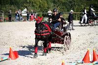 Photo n° 38441
