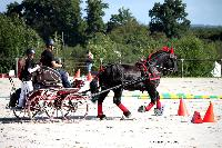 Photo n° 38442