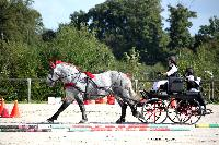 Photo n° 38443