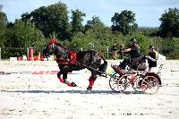 Photo n° 38444