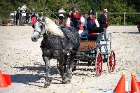 Photo n° 38445