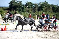 Photo n° 38447