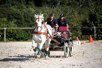 Photo n° 38448