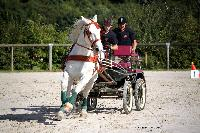 Photo n° 38450