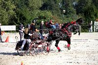 Photo n° 38451