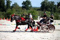 Photo n° 38452