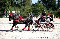 Photo n° 38453