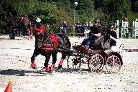 Photo n° 38454