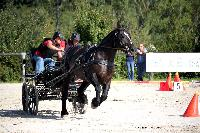 Photo n° 38455