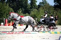 Photo n° 38456