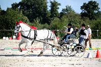 Photo n° 38457