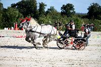 Photo n° 38459