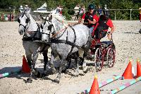 Photo n° 38461