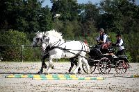 Photo n° 38462