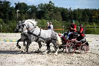 Photo n° 38463