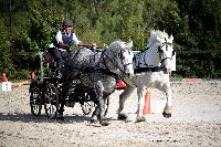 Photo n° 38464