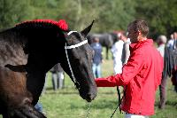 Photo n° 38466