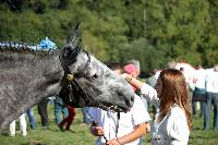 Photo n° 38467