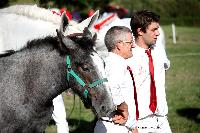 Photo n° 38470