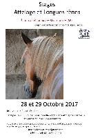 Photo n° 43059 Rivarennes stage  Affichée 4 fois Ajoutée le 04/10/2017 08:29:08 par JeanClaudeGrognet  --> Cliquer pour agrandir <--