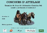 Photo n° 43077 Concours Amateur 2 & Club  à Castries ( 34 )  Affichée 13 fois Ajoutée le 05/10/2017 08:17:43 par Barouf  --> Cliquer pour agrandir <--