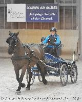 Photo n° 43229Rosières aux Salines 2018 photo  Juliette Mos Affichée 12 fois, 1 voteAjoutée le 31/01/2018 08:10:56 par JeanClaudeGrognet