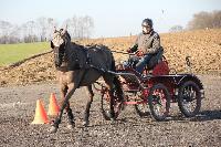 Photo n° 43358 Stage Bois de Lihus 17-18/2 avec Michaël Sellier Antoine Venet Affichée 3 fois Ajoutée le 19/02/2018 08:01:58 par JeanClaudeGrognet  --> Cliquer pour agrandir <--