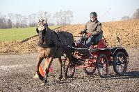 Photo n° 43359 Stage Bois de Lihus 17-18/2 avec Michaël Sellier Antoine Venet Affichée 6 fois Ajoutée le 19/02/2018 08:01:58 par JeanClaudeGrognet  --> Cliquer pour agrandir <--