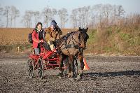 Photo n° 43378 Stage Bois de Lihus 17-18/2 avec Michaël Sellier Thomas Clercq Affichée 7 fois Ajoutée le 19/02/2018 08:01:58 par JeanClaudeGrognet  --> Cliquer pour agrandir <--