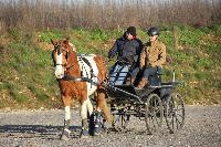 Photo n° 43389 Stage Bois de Lihus 17-18/2 avec Michaël Sellier Aurélien Moroy  Affichée 20 fois Ajoutée le 19/02/2018 08:01:59 par JeanClaudeGrognet  --> Cliquer pour agrandir <--