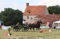 Photo n° 45204 CAT La Chevillonière JP Giraud - photovendee85.fr  Affichée 16 fois Ajoutée le 11/07/2018 13:29:53 par JeanClaudeGrognet  --> Cliquer pour agrandir <--