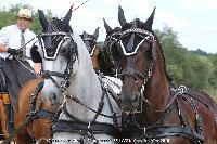 Photo n° 45207 CAT La Chevillonière JP Giraud - photovendee85.fr  Affichée 12 fois Ajoutée le 11/07/2018 13:29:53 par JeanClaudeGrognet  --> Cliquer pour agrandir <--