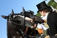Photo n° 45235 CAT La Chevillonière JP Giraud - photovendee85.fr  Affichée 11 fois Ajoutée le 11/07/2018 13:29:54 par JeanClaudeGrognet  --> Cliquer pour agrandir <--
