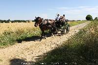 Photo n° 45238 CAT La Chevillonière JP Giraud - photovendee85.fr  Affichée 1 fois Ajoutée le 11/07/2018 13:29:54 par JeanClaudeGrognet  --> Cliquer pour agrandir <--